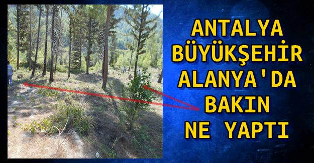 Antalya Büyükşehir Bakın Ne yaptı