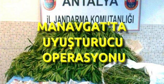 Manavgat Jandarma'dan Sağırin'de Uyuşturucu Operasyonu