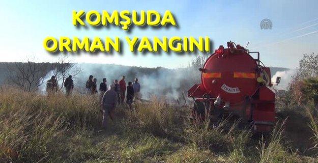 Manavgat'ta Makilik Alanda Yangın