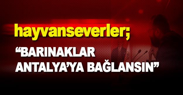 """Hayvanseverler; """"Barınaklar Antalya'ya Bağlansın"""""""