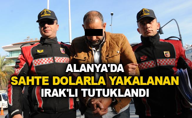 Alanya'da sahte dolarla yakalanan Irak'lı tutuklandı