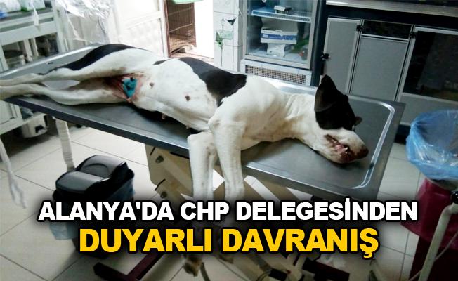 Alanya'da CHP delegesinden duyarlı davranış