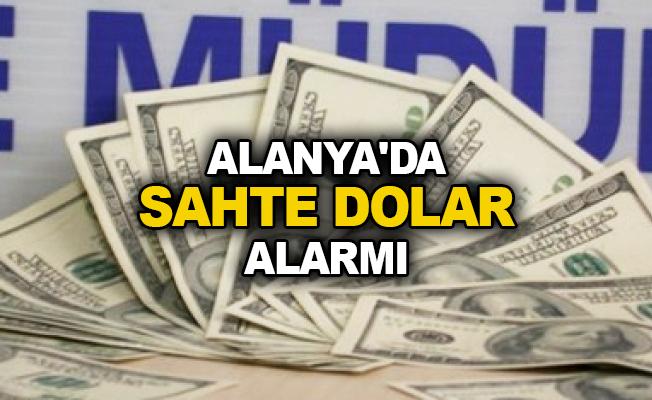 Alanya'da sahte dolar alarmı