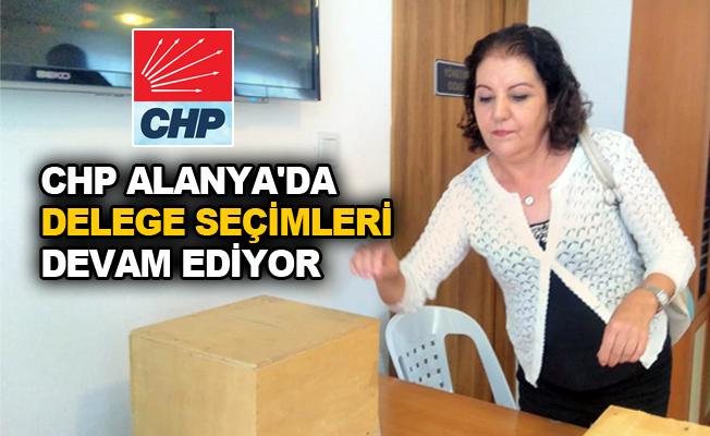 CHP Alanya'da delege seçimleri devam ediyor
