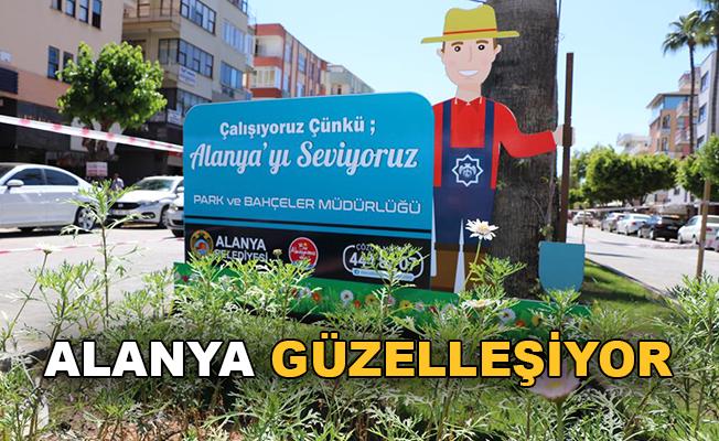 Alanya Atatürk caddesi güzelleşiyor