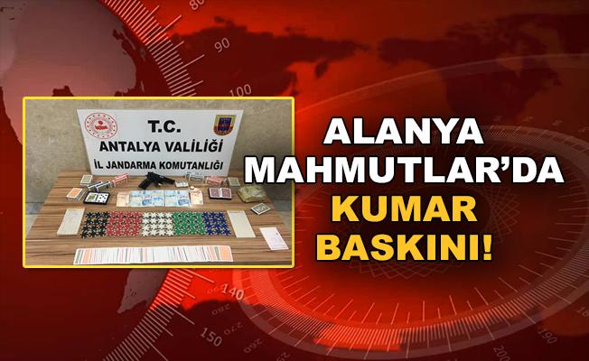 Alanya Mahmutlar'da kumar baskını