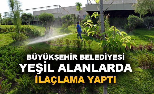 Büyükşehir Belediyesi yeşil alanlarda ilaçlama yaptı