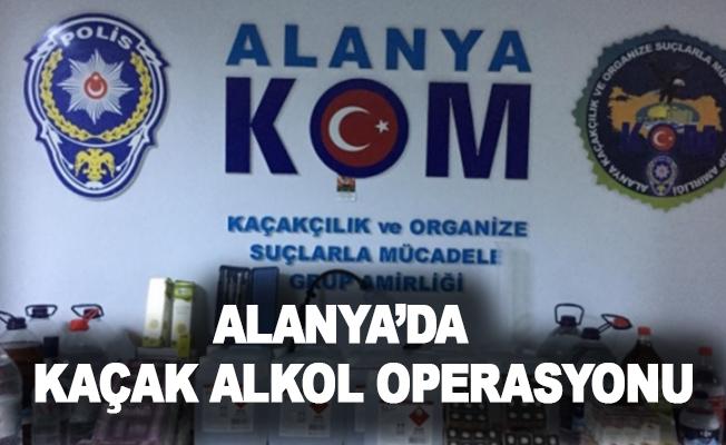 Alanya'da kaçak alkol operasyonu