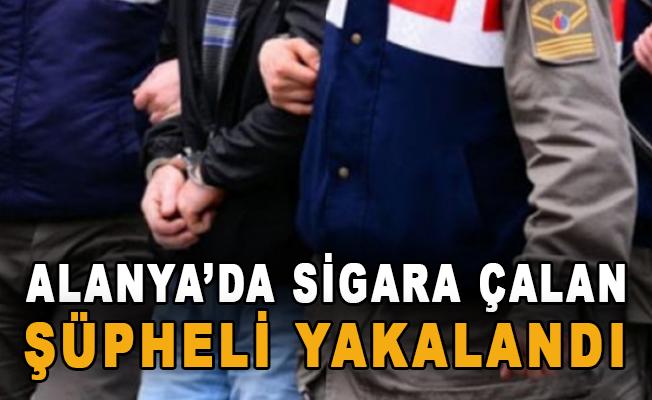 Alanya'da sigara çalan şüpheli yakalandı