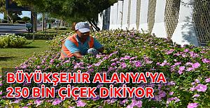Alanya'ya 250 Bin Çiçek
