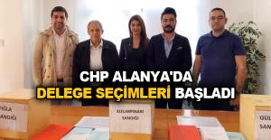 CHP Alanya'da Delege Seçimleri Başladı
