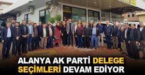 Alanya AK Parti delege seçimleri devam ediyor