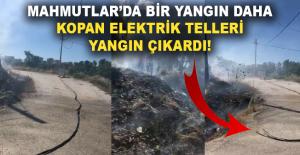 Alanya Mahmutlar'da bir yangın daha
