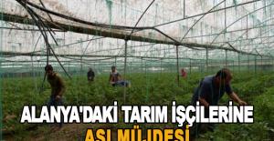 Alanya'daki tarım işçilerine aşı müjdesi