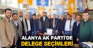 Alanya Ak Parti'de delege seçimleri doğu mahalleleriyle başladı