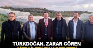 Türkdoğan, zarar gören çiftçileri ziyaret etti