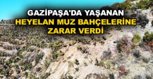 Gazipaşa'da yaşanan heyelan muz bahçelerine zarar verdi