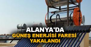 Alanya'da güneş enerjisi faresi yakalandı