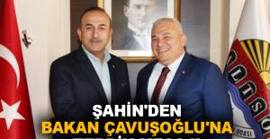 Şahin'den Bakan Çavuşoğlu'na tebrik mesajı