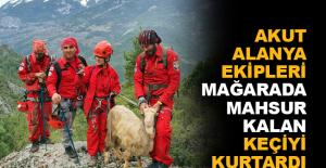 AKUT Alanya ekipleri mağarada mahsur kalan keçiyi kurtardı