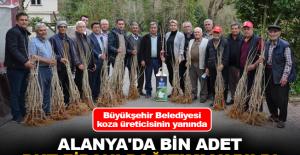 Alanya'da bin adet dut fidanı dağıtımı yapıldı