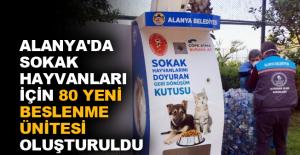 Alanya'da sokak hayvanları için 80 yeni beslenme ünitesi oluşturuldu