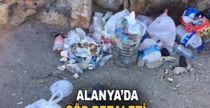 Alanya'da çöp rezaleti!