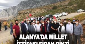 Alanya'da millet ittifakı fidan dikti