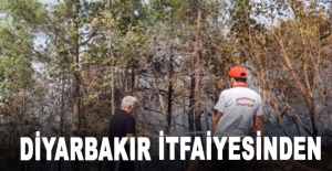 Diyarbakır itfaiyesinden Alanya'ya destek